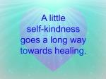 Self-Kindness 2